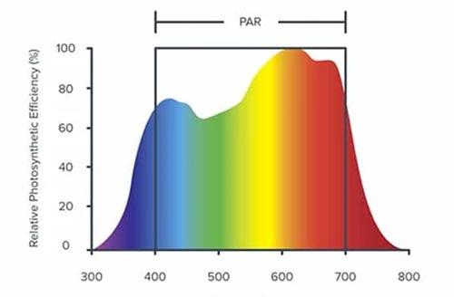 quang phổ