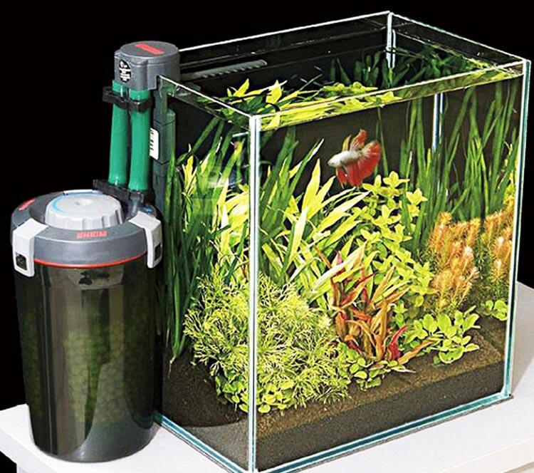 Hệ thống lọc bể cá